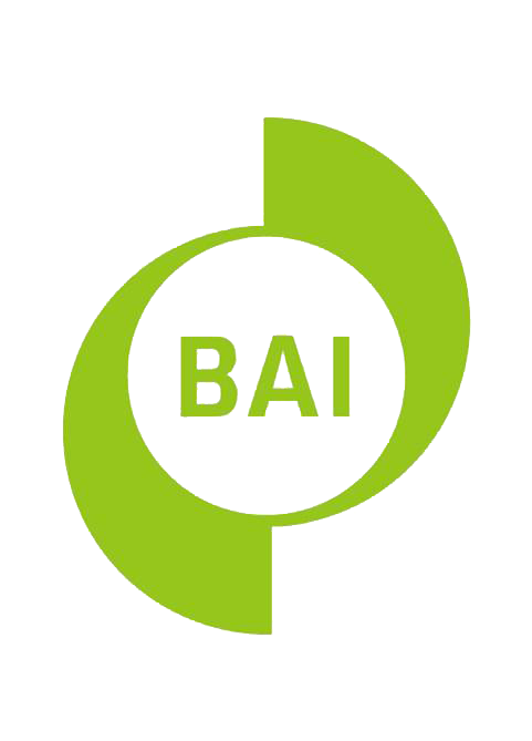BAI logo mark colour