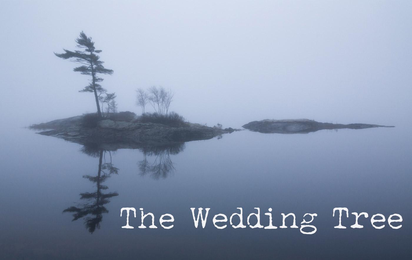 wedding-tree-poster.jpg